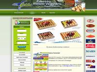 Weboldal készítése colibri90.hu