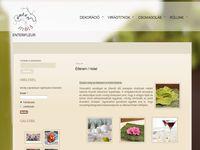 Weboldal készítése viraglap.hu
